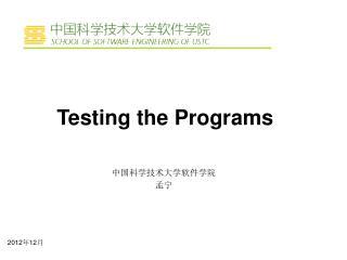 Testing the Programs