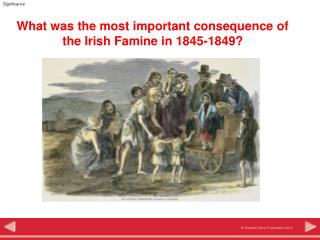 What was the most important consequence of the Irish Famine in 1845-1849?