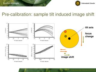 Pre-calibration: sample tilt induced image shift