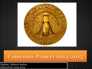 Student : Salvucci Andrea School Year: 2013-2014