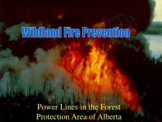 Wildland Fire Prevention