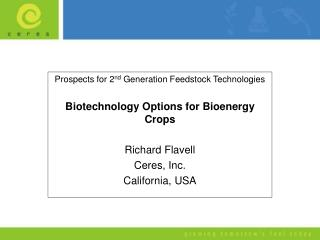 Prospects for 2 nd  Generation Feedstock Technologies Biotechnology Options for Bioenergy Crops