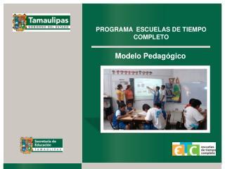 Modelo Pedag�gico