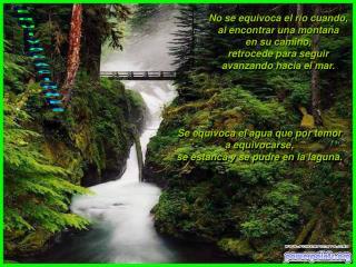 No se equivoca el río cuando,  al encontrar una montaña  en su camino,