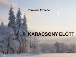 T�rmezei Erzs�bet :