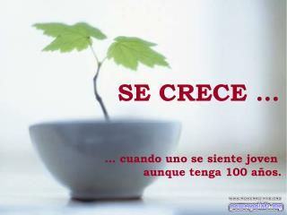 SE CRECE ...