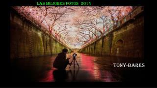 LAS MEJORES FOTOS  2014