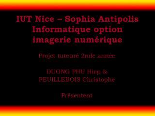 IUT Nice – Sophia Antipolis Informatique option imagerie numérique