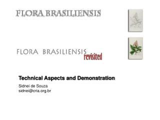 Technical Aspects and Demonstration Sidnei de Souza sidnei@cria.br