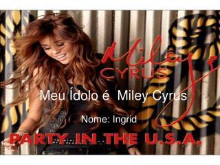 Meu Ídolo é  Miley Cyrus