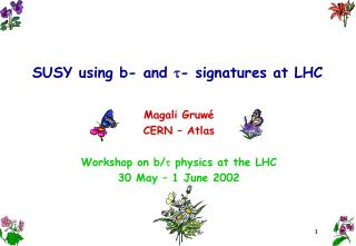 SUSY using b- and   - signatures at LHC