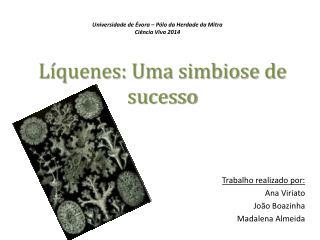 Líquenes: Uma simbiose de sucesso