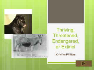 Thriving, Threatened, Endangered, or Extinct