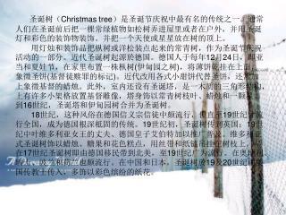 圣诞树( Christmas tree )是圣诞节庆祝中最有名的传统之一。通常人们在圣诞前后把一棵常绿植物如松树弄进屋里或者在户外,并用圣诞灯和彩色的装饰物装饰。并把一个天使或星星放在树的顶上。
