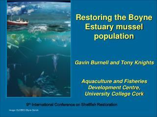 Restoring the Boyne Estuary mussel population Gavin Burnell and Tony Knights