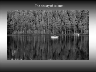 The beauty of  colours