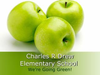 Charles R Drew  Elementary School