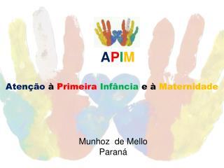 A P I M Atenção  à  Primeira Infância  e à  Maternidade