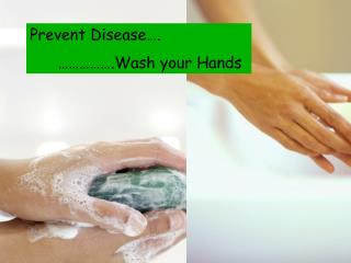 Prevent Disease….       …………….Wash your Hands