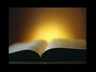 Revelation 22.3-5