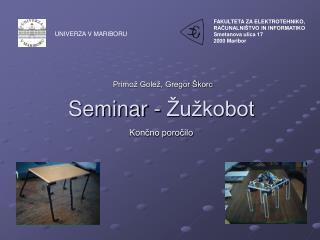 Seminar - Žužkobot