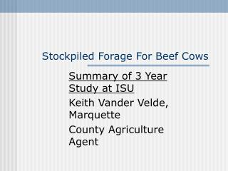 Stockpiled Forage For Beef Cows
