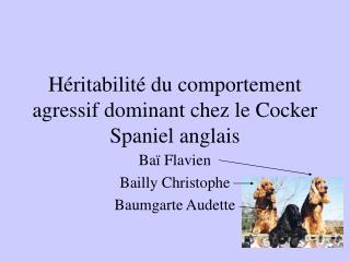 H ritabilit  du comportement agressif dominant chez le Cocker Spaniel anglais