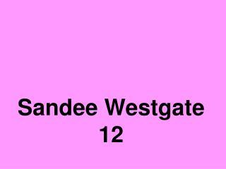 Sandee Westgate 12