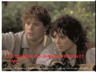 LE SEIGNEUR DES ANNEAUX:FRODON ET SAM