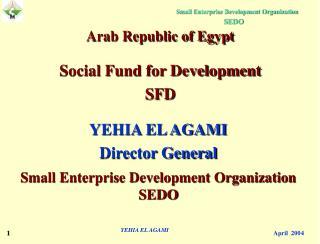 YEHIA EL AGAMI Director General Small Enterprise Development Organization  SEDO