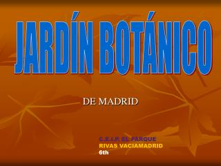 DE MADRID
