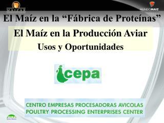 """El Maíz en la """"Fábrica de Proteínas"""""""