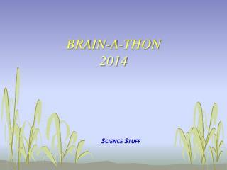 Brain-A-Thon    2014