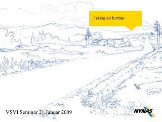 VSVI Seminar 21.Januar 2009
