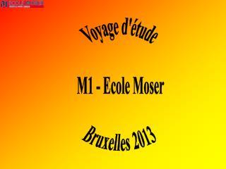 Voyage d'�tude  M1 - Ecole Moser  Bruxelles 2013
