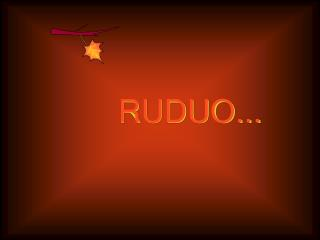 RUDUO...