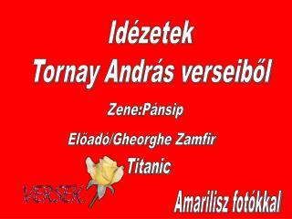 Idézetek Tornay András verseiből