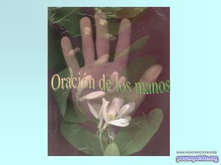 Oraci�n de los manos