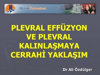 Dr Ali Özdülger