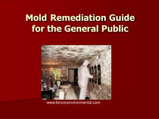 Mold Remediation Guide for the General Public