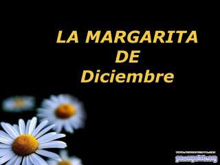 LA MARGARITA    DE            Diciembre