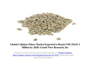 Global Cellulose Fibers Market Outlook to 2020