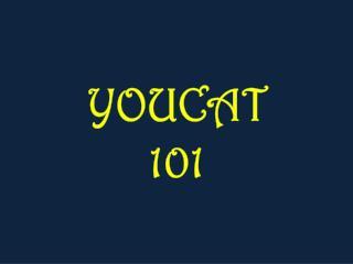 YOUCAT 101