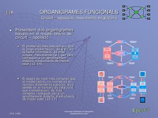 ORGANIGRAMES FUNCIONALS Circuit - oposició: moviments migratoris