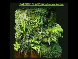 PATRICK BLANC  függőleges kertjei
