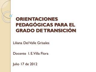 ORIENTACIONES PEDAG�GICAS PARA EL GRADO DE TRANSICI�N