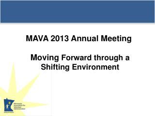 MAVA 2013 Annual Meeting