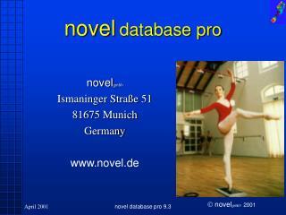 novel database pro