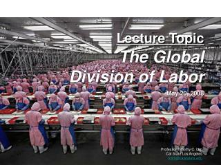 Lecture Topic The Global  Division of Labor May 20, 2008