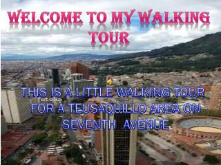 WELCOME TO MY WALKING TOUR